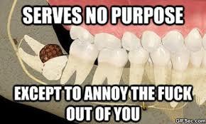 Scumbag-wisdom-teeth.jpg via Relatably.com