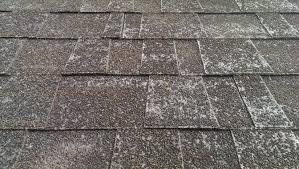 Image result for asphalt shingle problems