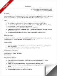 senior programmer resume template  tomorrowworld cosenior programmer