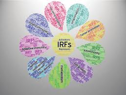 The IRF <b>family</b> members. The <b>word cloud</b> contains a list of the broad ...