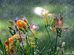 لكل محبي صور الطبيعة  اكبر تجميع لصور الطبيعة - صفحة 3 Images?q=tbn:ANd9GcQFST81FdeWR-r8hReJ2g_4c6vSywSHhd18JEVQKGvVG922IUY4cg