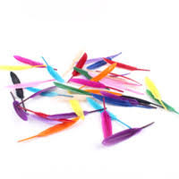 Discount Dyed Goose Feathers | Dyed Goose Feathers <b>Wholesale</b> ...