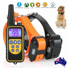 <b>800m Electric Dog</b> Training Collar with Remote Control. Waterproof ...