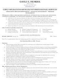 coo resume sample chief operating officer executive gallery of chief executive officer resume