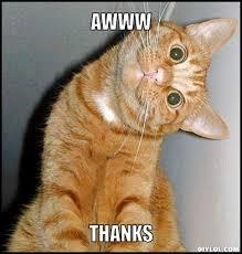 thanks Meme | thank-you-cat-meme-generator-awww-thanks-9070cc.jpg ... via Relatably.com