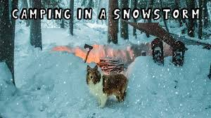 <b>Winter</b> Camping in a Snowstorm with My <b>Dog</b> - YouTube