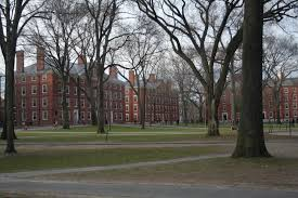 top u s colleges look to diversify their international population not only are top american universities like harvard university receiving thousands of applications from in the united states but the number of