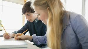 how to do a peer review of an essay  referencecom how to do a peer review of an essay