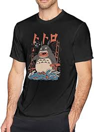 ERDONE My Neighbor Totoro The Neighbors Attack ... - Amazon.com