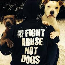 best images about we are their voice we stand for animal 17 best images about we are their voice we stand for animal rights on shelters pets and pit bull