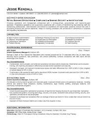Operations Resume Samples   Resume Format for Operations       bank manager resume