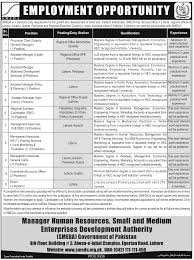 provincial chief assistant manager legal job in smeda provincial chief assistant manager legal job in smeda assistant manager agro food