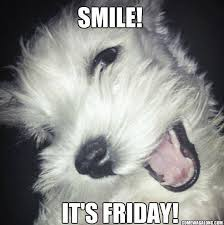 Thank God It's Friday – Dog Edition Friday Memes! | Come Wag Along via Relatably.com