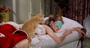 Где купить: <b>маска для сна</b>