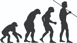 is the human species still evolving    popular scienceis the human species still evolving