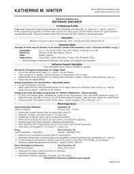 google resume format template google resume format