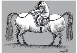 Image result for karikature grujevski