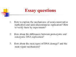 essay question dna replication   essay structureessay questions  how to explain the mechanisms of semi conservative replication and