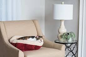 Petmate Self <b>Warming Cat Bed</b>, 19-Inch: Amazon.co.uk: Pet Supplies