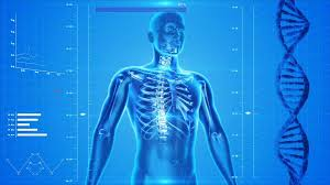 「正常血圧と反射機構」の画像検索結果