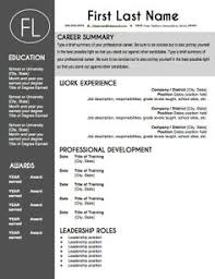 mint resume template  professional package  mac or pc for word    modern gray resume template  make your resume pop   this sleek and modern template