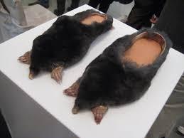 """Résultat de recherche d'images pour """"chaussure bizarre"""""""