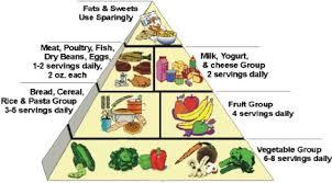 Risultati immagini per food pyramid