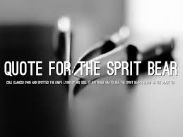 touching spirit bear essay ghost of spirit bear spirit bear by ben mikaelsen reviews touching spirit bear final exam