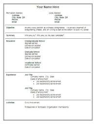 combination resume format example