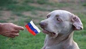 Разговоры о назначении посла РФ второстепенны на фоне российской агрессии, - МИД - Цензор.НЕТ 2847