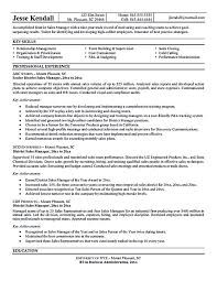 ideas about Sales Resume on Pinterest   Resume Skills     Pinterest The sales manager resume should have a great explanation and description about anything in sales qualification