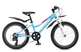 <b>Велосипед SCHWINN Cimarron</b> (<b>2019</b>) - купить в Санкт ...