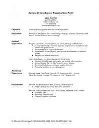 lives appealing good examples of resumes fascinating 89 fascinating simple resume example