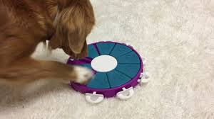 18 Best Puzzle <b>Toys</b> That Actually Help Bored <b>Dogs</b>