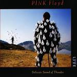 Delicate Sound of Thunder album by Pink Floyd