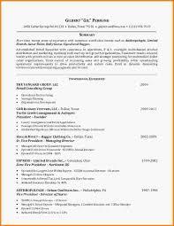 luxury retail  s associate resume   agenda templates sampleluxury retail  s associate resume slide      jpg