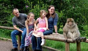 Trentham Monkey Forest (Stoke-on-Trent) - 2019 All You Need to ...