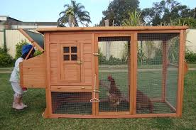 September    chicken coop plans     backyard chicken coop plans