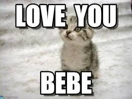 Love You - Sad Cat meme on Memegen via Relatably.com