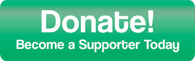 Image result for Donate button