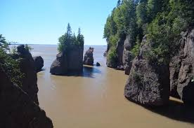 Risultati immagini per hopewell rocks high and low tide