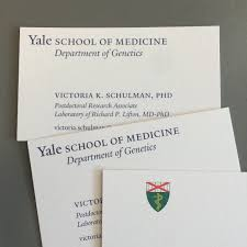 vkschulman yale business card career network for student vkschulman yale business card jpg