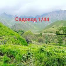 Саид Рашт | ВКонтакте