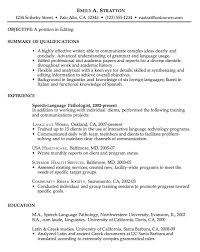 chronological resume example  editingchronological sample resume for editing job