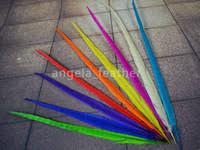 <b>Pheasant Feather</b> Wedding Canada | Best Selling <b>Pheasant Feather</b> ...