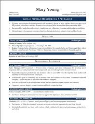 hr resume objective resume sample human resources executive sample resume format for hr executive resume format