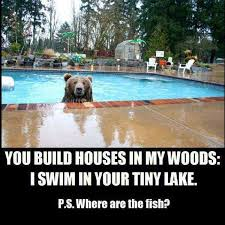Tiny Lake   Funny Pictures, Quotes, Memes, Jokes via Relatably.com