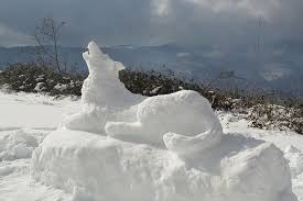 Risultati immagini per foto cosenza mab neve