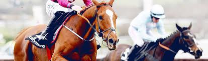 <b>Horse Racing</b> Betting & Betting Odds ⇒ William Hill™
