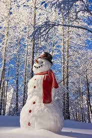 Pics Hut: Beautiful <b>winter scene</b>